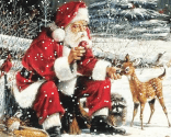 Santa in the forest
