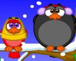 Quacking birds